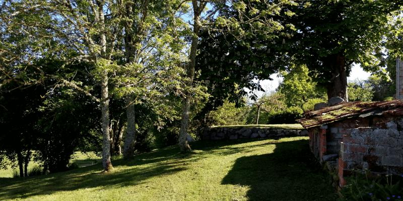 jardin arboré devant gite